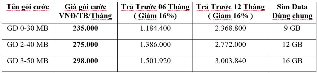 Lắp đặt cáp quang VNPT Quận Tân Phú